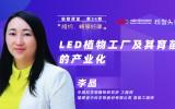 中科三安李晶:LED植物工厂及育苗的产业化